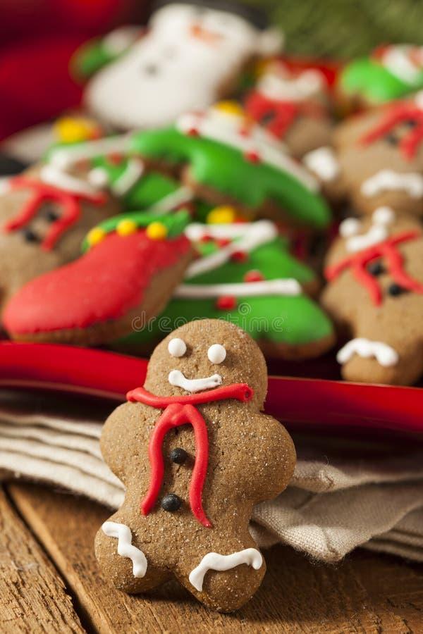 Galletas heladas tradicionales de la Navidad del pan de jengibre imagen de archivo