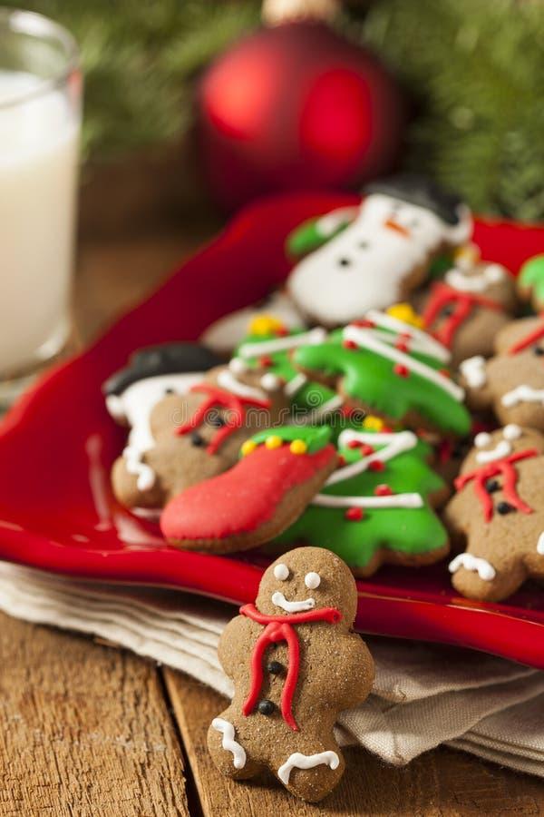 Galletas heladas tradicionales de la Navidad del pan de jengibre fotografía de archivo libre de regalías