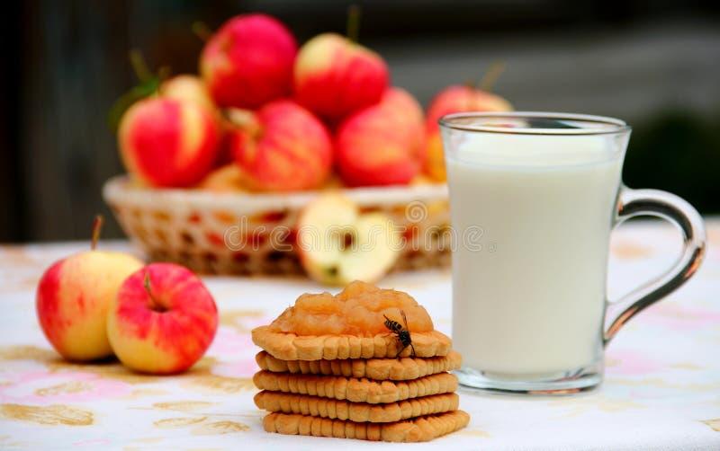 Galletas y leche foto de archivo