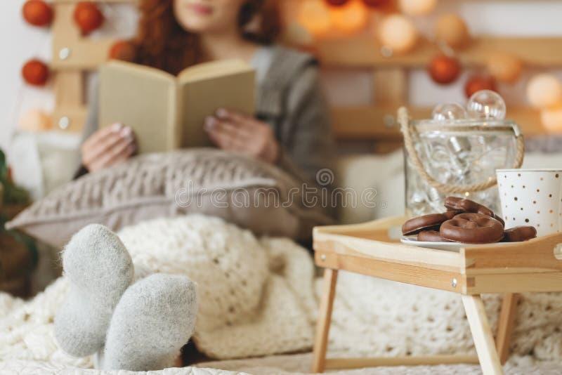 Galletas y té del pan de jengibre foto de archivo libre de regalías