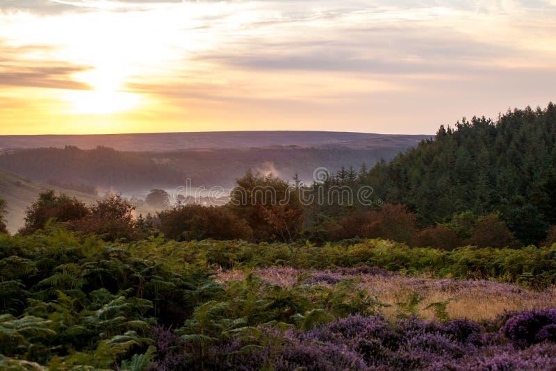 Galley sunrise royalty free stock photos