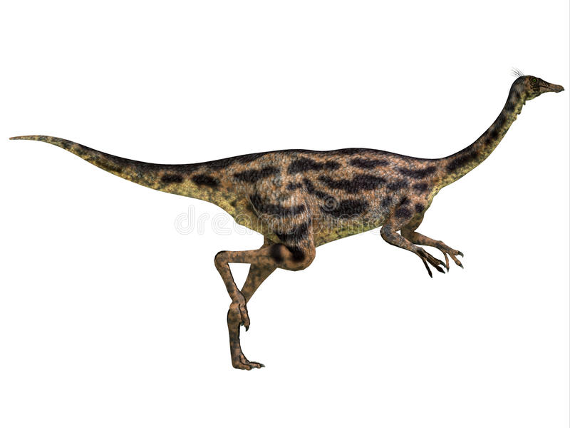 Gallimimus Profile. Gallimimus was an omnivorous dinosaur that lived in Mongolia during the Cretaceous Period