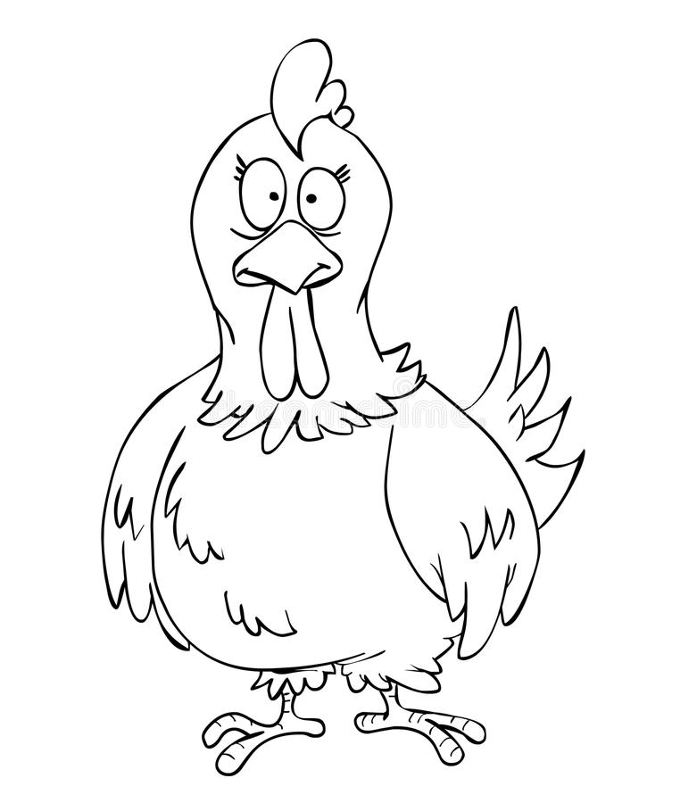 Gallina libre illustration