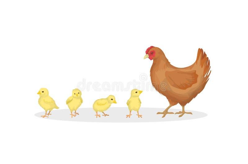 Gallina con los polluelos stock de ilustración