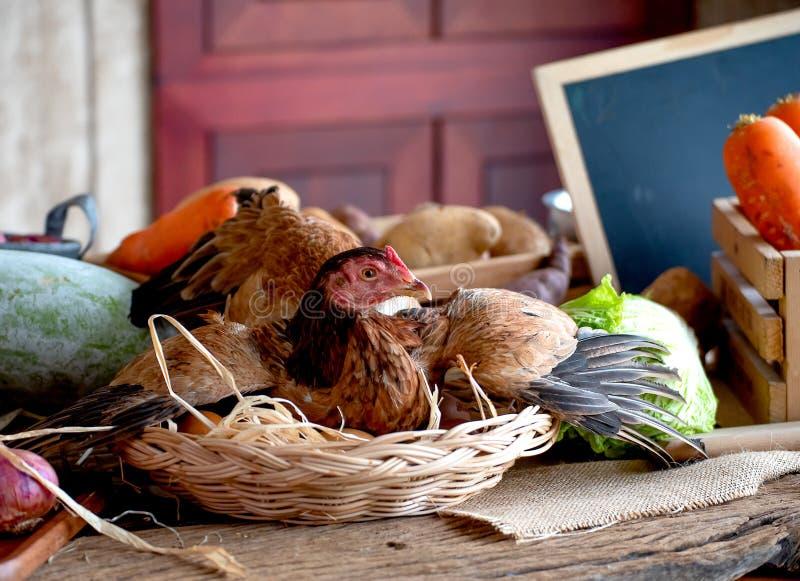 Gallina en cesta con los huevos entre los diversos tipos de verdura en la tabla en la cocina foto de archivo libre de regalías