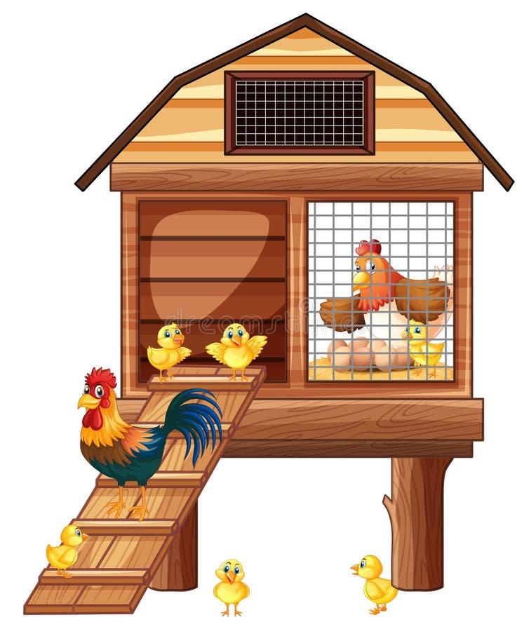 Gallinero de pollo con muchos polluelos stock de ilustración