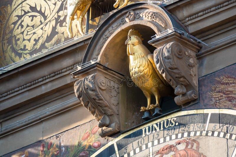 gallo dorato all'orologio astronomico di Heilbronn del municipio immagini stock libere da diritti