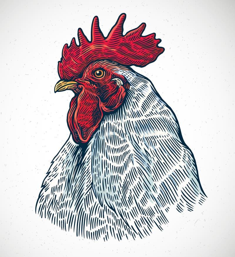 Gallo nello stile grafico illustrazione vettoriale