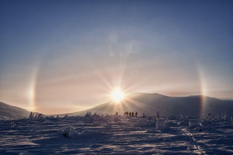 Gallo zimy pogodne góry w Urals zdjęcie royalty free