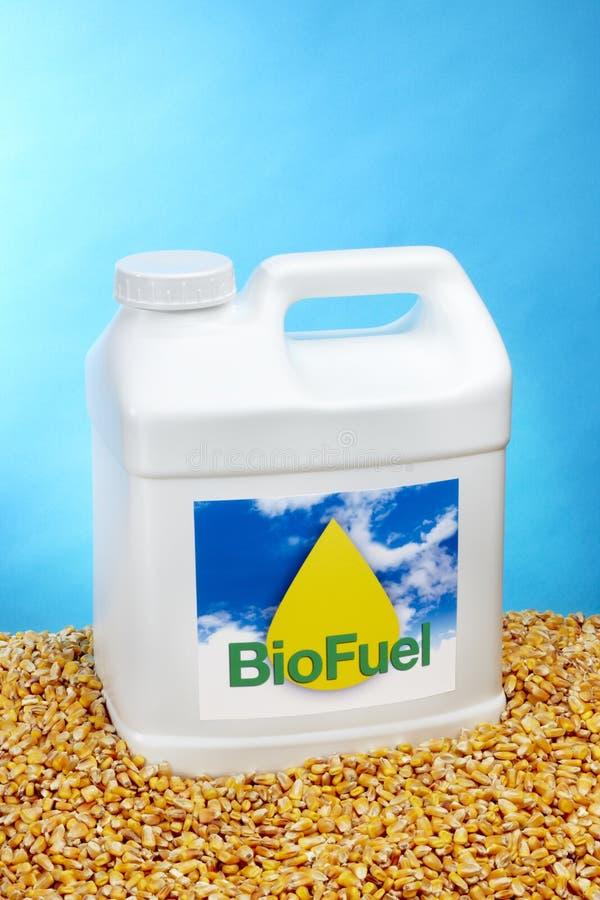 Download Gallon of Biodiesel stock photo. Image of gasoline, liquid - 16092650