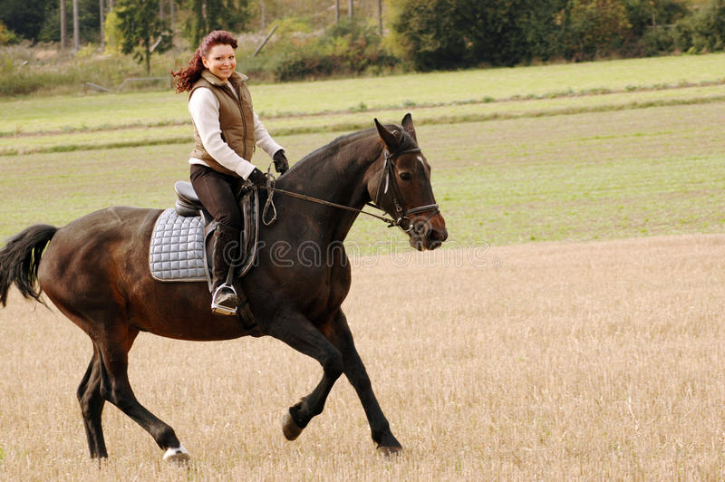 Gallop. stock image