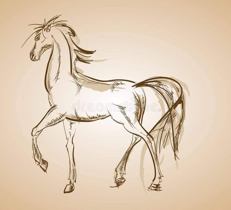 galloping лошадь вычерченные женщины иллюстрации s руки стороны бесплатная иллюстрация
