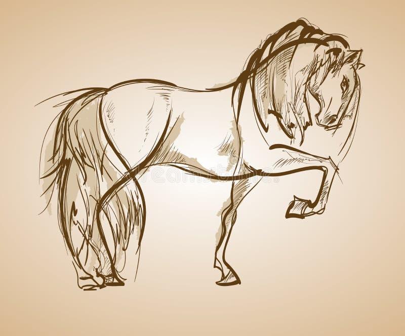galloping лошадь вычерченные женщины иллюстрации s руки стороны иллюстрация вектора