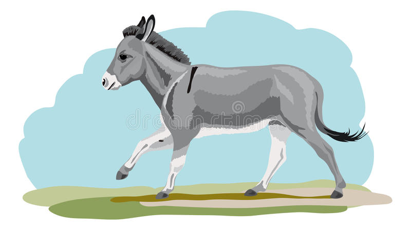 Galloping осел иллюстрация вектора