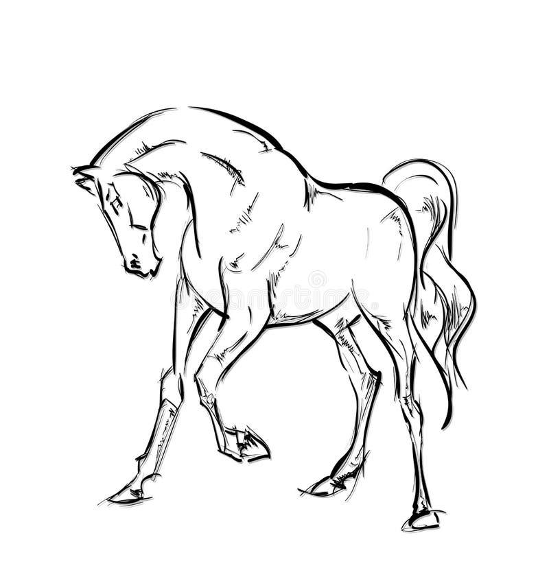 galloping лошади иллюстрация вектора