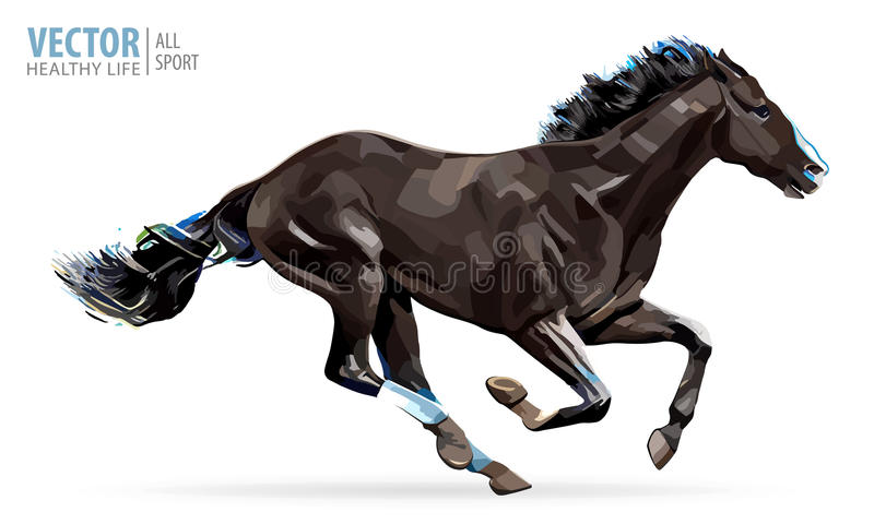 galloping лошадь аравийская лошадь Портрет стоя против isolat бесплатная иллюстрация