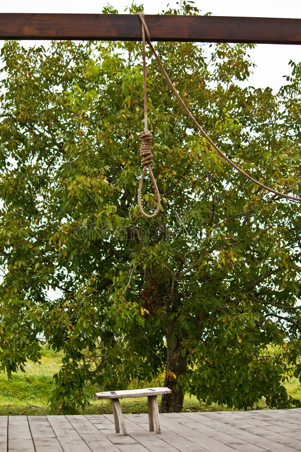 Download Gallows stock photo. Image of noose, scary, lasso, gallows - 20969660