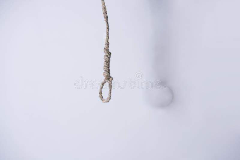 Adjustable Penis Weight Hanging Kit With Noose Hanger Zen Hanger