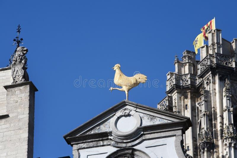 Galo e leão dourados em Mechelen imagem de stock royalty free