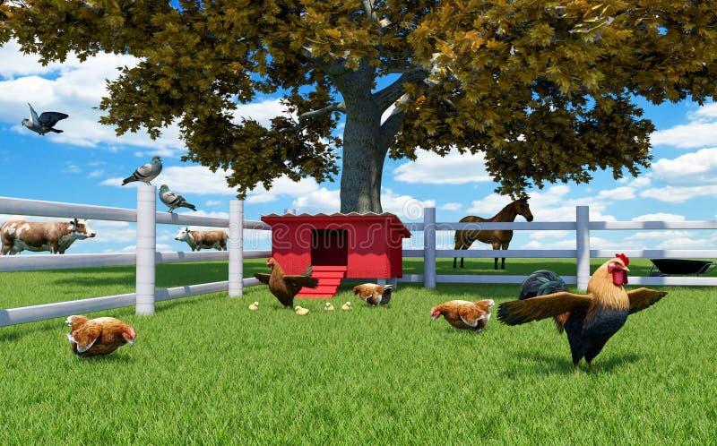 Galo, galinhas e galinhas na exploração avícola com capoeira de galinha e animais de exploração agrícola ilustração do vetor