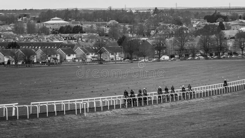 Galope campos de treino do cavalo de corrida do tempo foto de stock