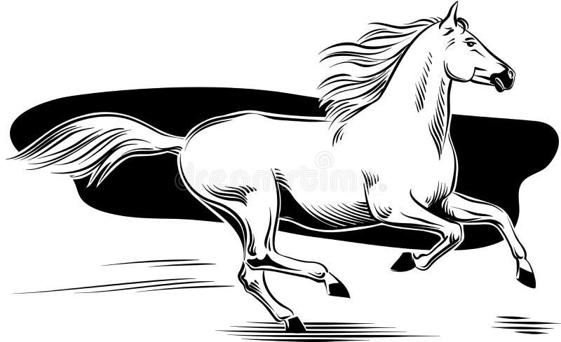 Galope del caballo blanco ilustración del vector