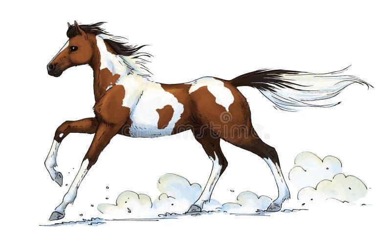 Galope del caballo del Pinto stock de ilustración