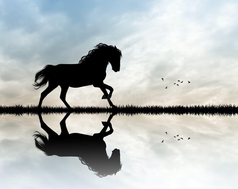 Galope del caballo en la puesta del sol ilustración del vector