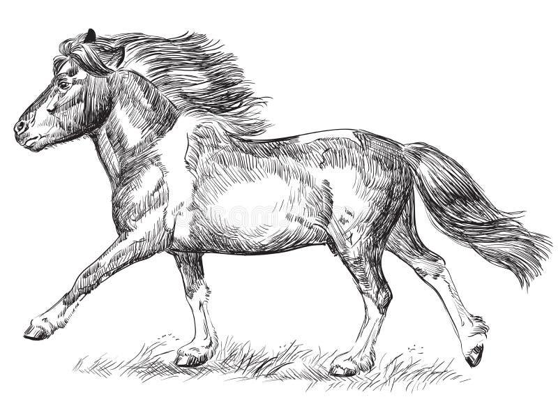 Galope del potro de la imagen del dibujo de la mano stock de ilustración
