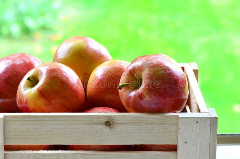 Download Galowi jabłka obraz stock. Obraz złożonej z owoc, cukierki - 30933649