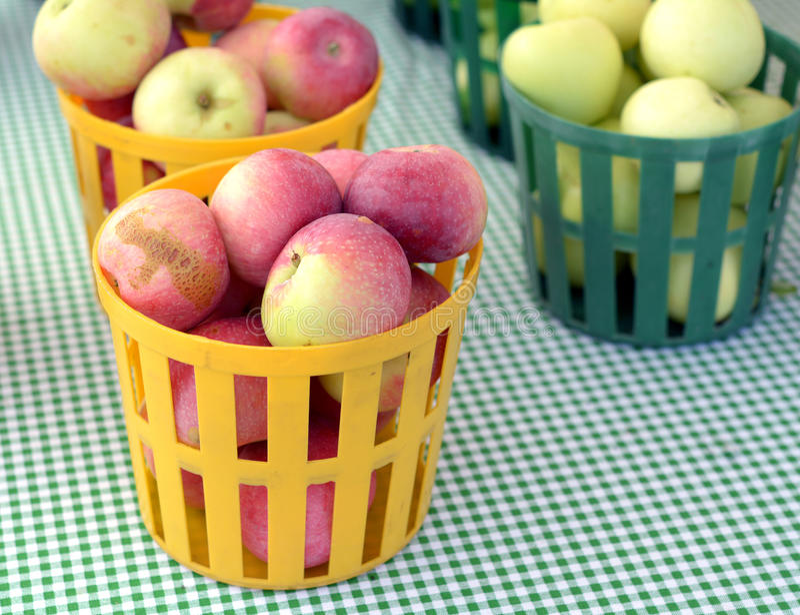 Galowy Apple obrazy stock