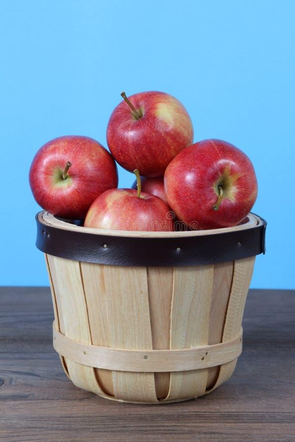 Galowy Apple obraz stock