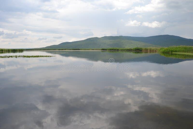 Galowy jeziorny park narodowy Edirne, TÃ ¼ rkiye fotografia royalty free