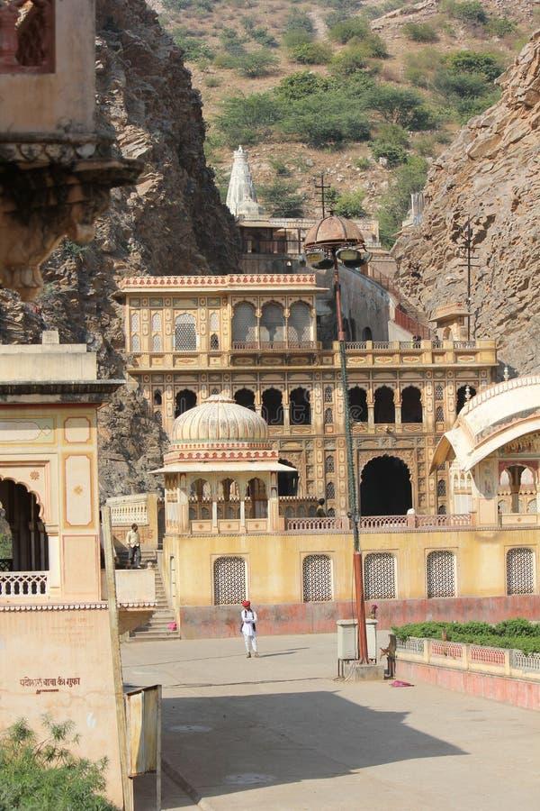 Galta świątynia małpy świątynne w India obrazy royalty free