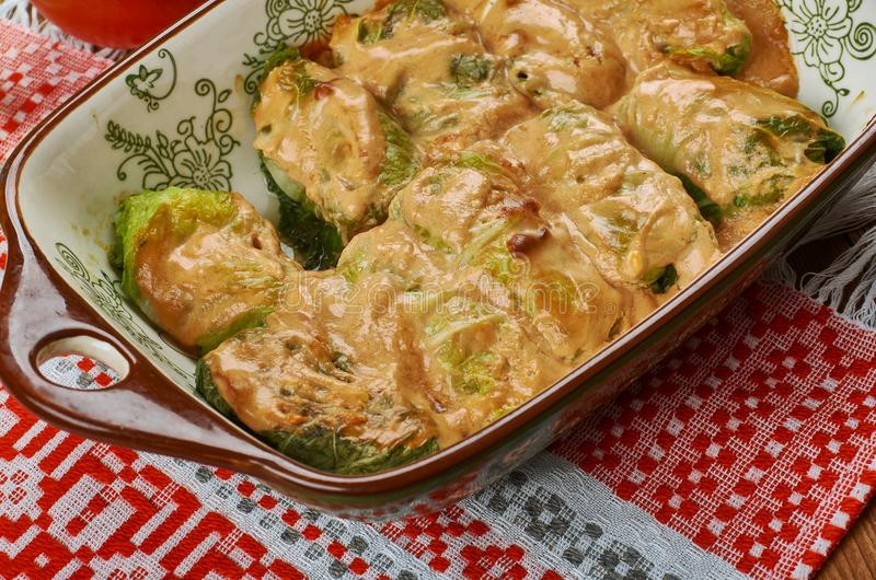 Polish Galumpkis. Galumpkis, Stuffed Cabbage Rolls, Polish cuisine , Traditional assorted Poland dishes, Top view royalty free stock photography