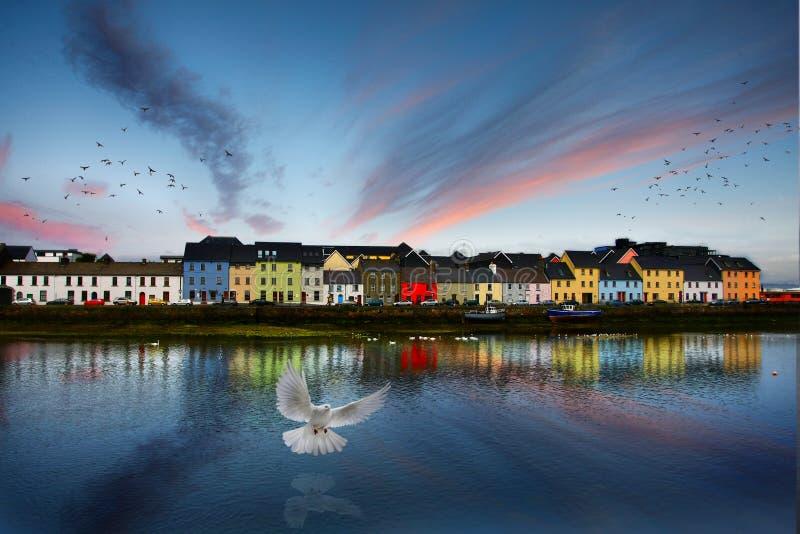 Galway Irlanda, la passeggiata lunga, case variopinte immagini stock libere da diritti