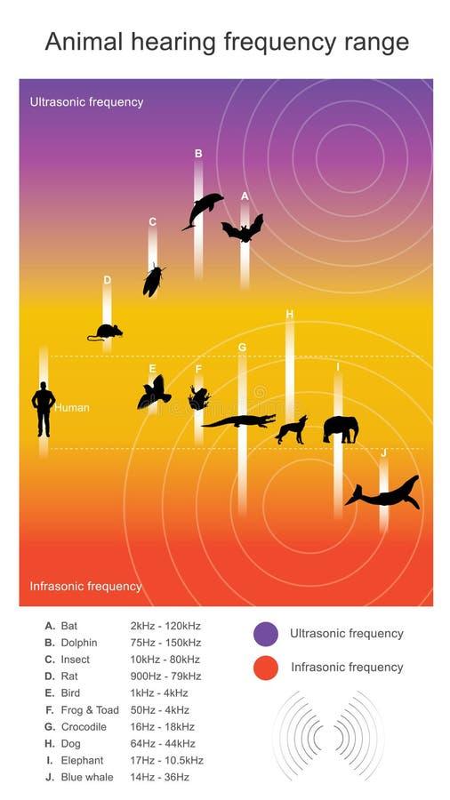 Gama de frecuencia animal de la audición La gama de audiencia describe sonó ilustración del vector