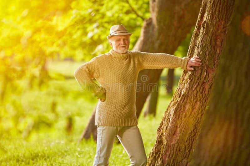 Gamal man i sommar i en skog royaltyfri fotografi