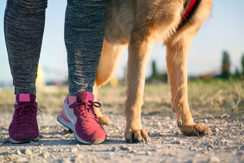Gamba del pareggiatore delle donne e del suo cane immagini stock