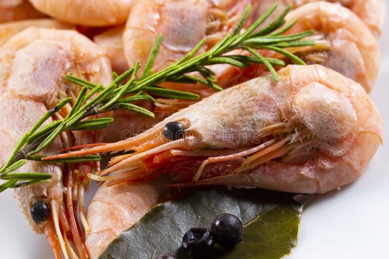Gamba hervida del camarón entera con las especias Camarones rosados con una puntilla del tomillo y de la hoja de laurel foto de archivo