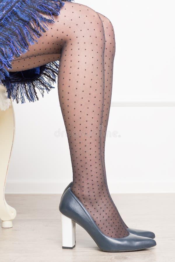 Gambe della donna in calzamaglia nere nella griglia con i pois in scarpe blu scuro con i tacchi alti fotografie stock