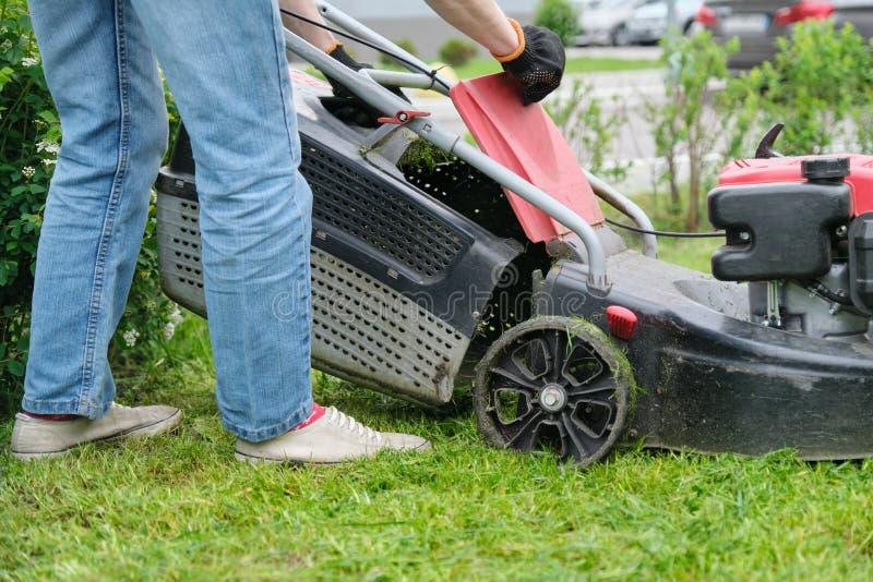 Gambe della donna del giardiniere che falciano erba con la falciatrice, cortile della citt? di una costruzione di appartamento fotografia stock libera da diritti