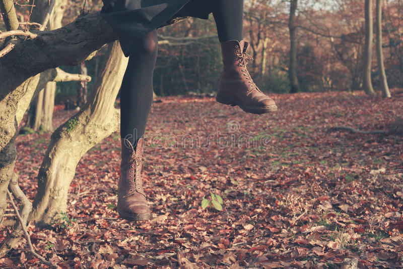 Gambe della persona che ciondolano dall'albero fotografie stock