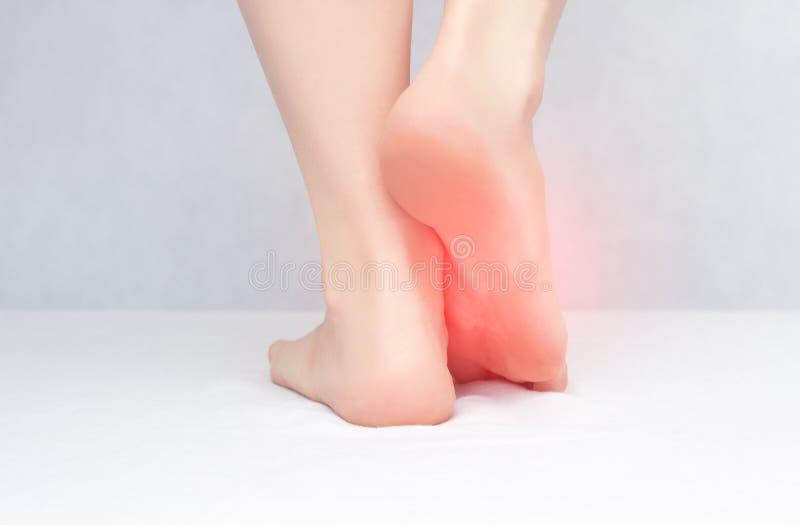 Gambe e piedi femminili su un fondo bianco che ferita e prurito a causa del fungo, primo piano, spazio della copia, dermatite immagini stock libere da diritti