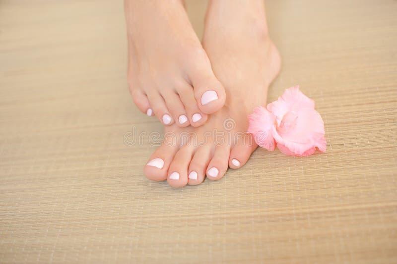 Gambe femminili con i chiodi ed il fiore rosa-chiaro fotografia stock