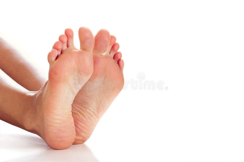 Gambe femminili con spazio fotografia stock