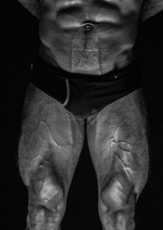 Gambe maschii fotografia stock