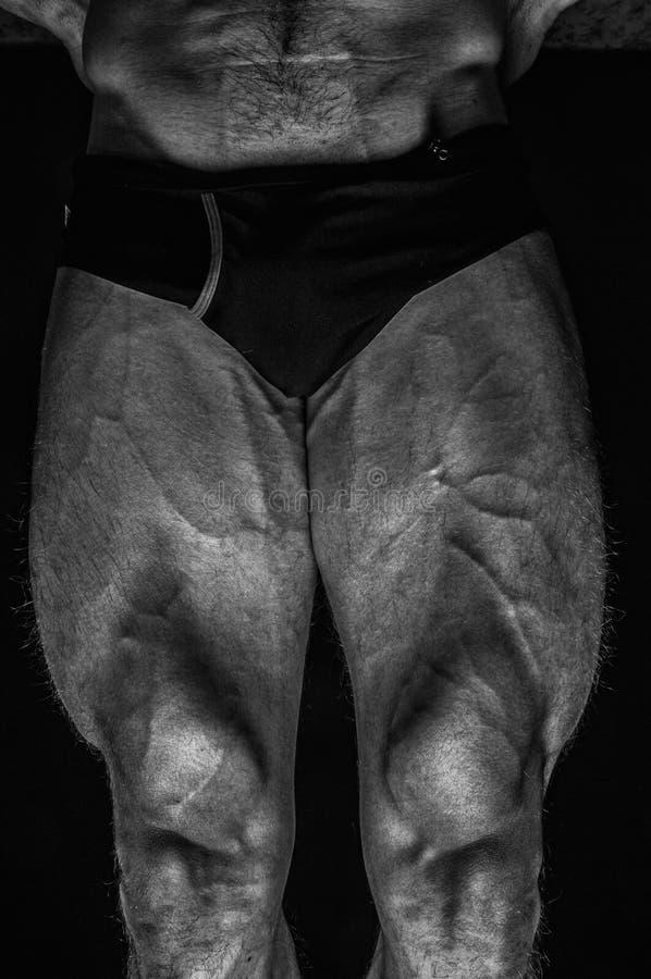 Gambe maschii fotografie stock