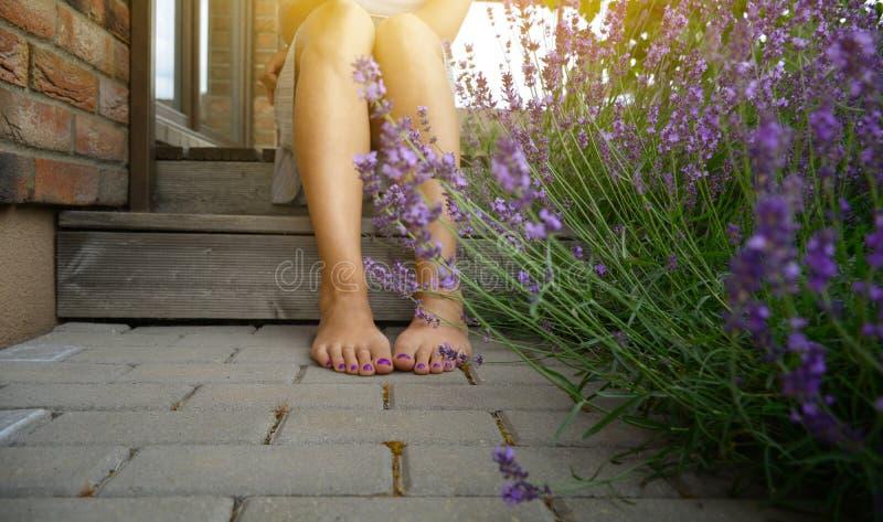Gambe scalze della giovane donna, sedentesi nel cortile di stile della Provenza, circondato con le piante della lavanda immagini stock