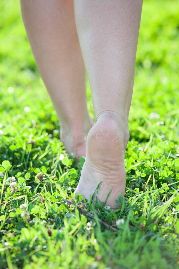 Gambe scalze delle donne che fanno un passo sull'erba verde fotografia stock
